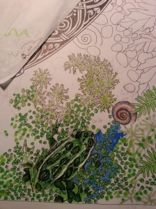 "Janet Balboa, Anam Cara detail, marker and colored pencil, 19"" x 24"" c. 2014"